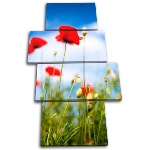 Poppies Flowers Floral - 13-1232(00B)-MP04-PO